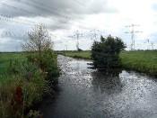 Das ist er: der Steertgraben in Bremen-Strom.